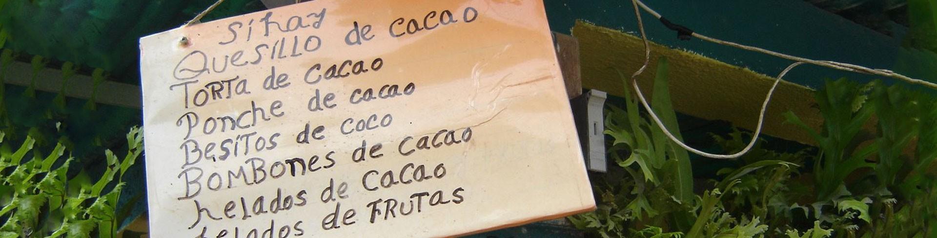 CATAS DE CHOCOLATE e INICIACION A LA ELABORACION DE CHOCOLATE BEAN TO BAR