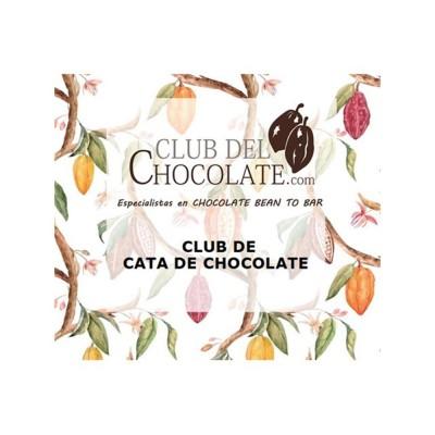 Como degustar chocolate